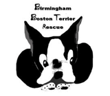 Birmingham Boston Terrier Rescue logo